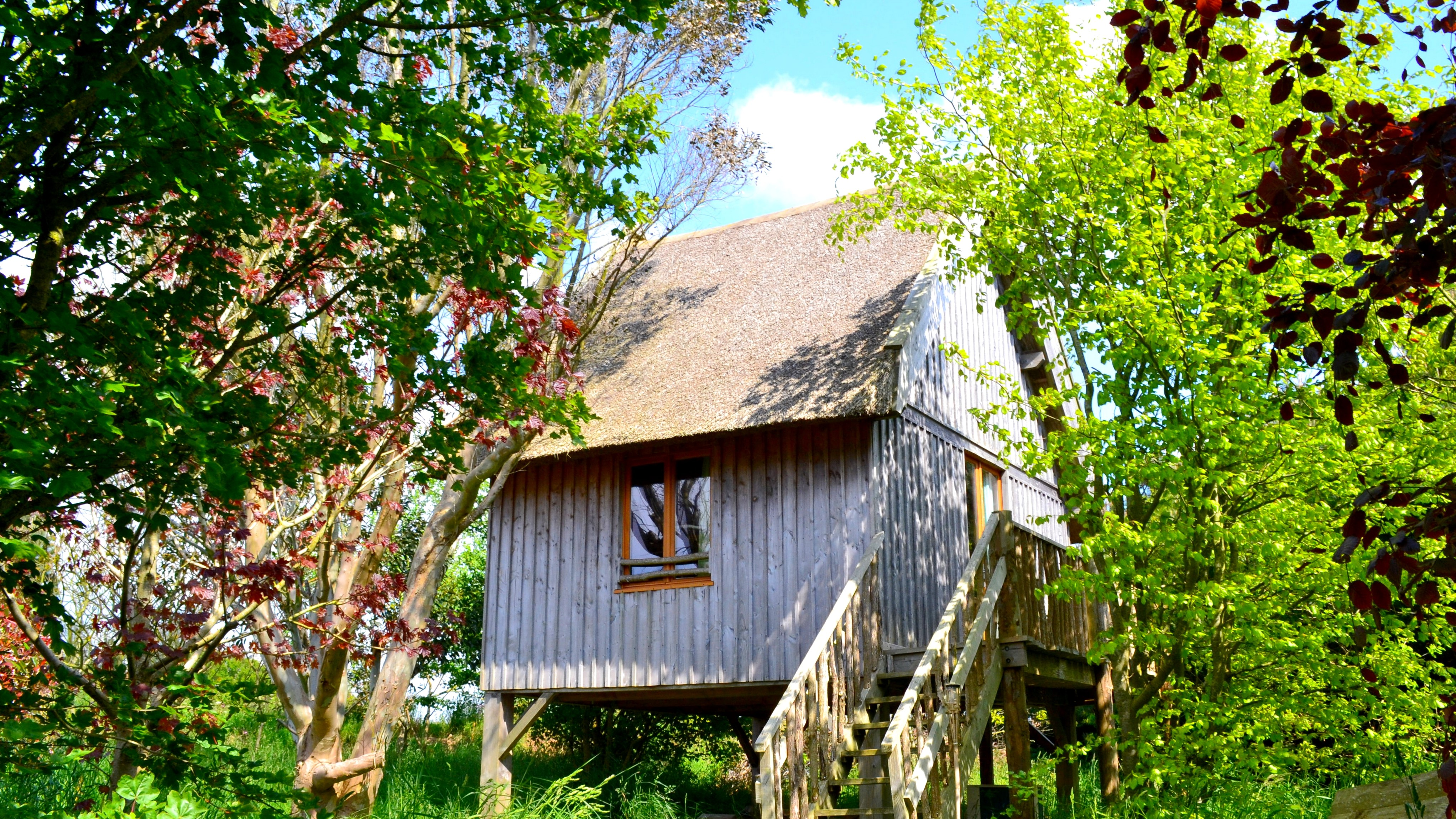 treehouse Guesthouse Le nid d'iroise